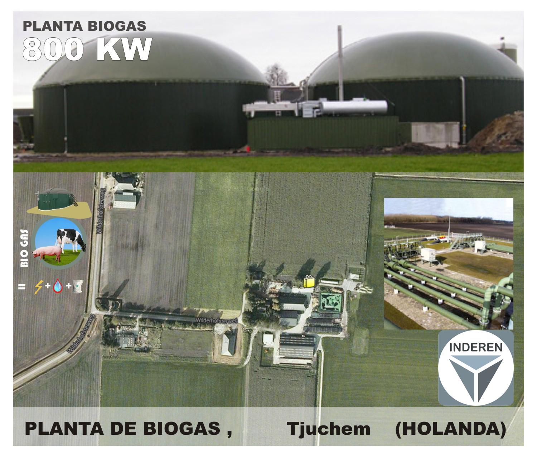 Planta de Biogás de 800kW en Tjuchem Holanda 03