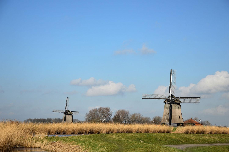 Planta de Biogás de 800kW en Tjuchem Holanda 02