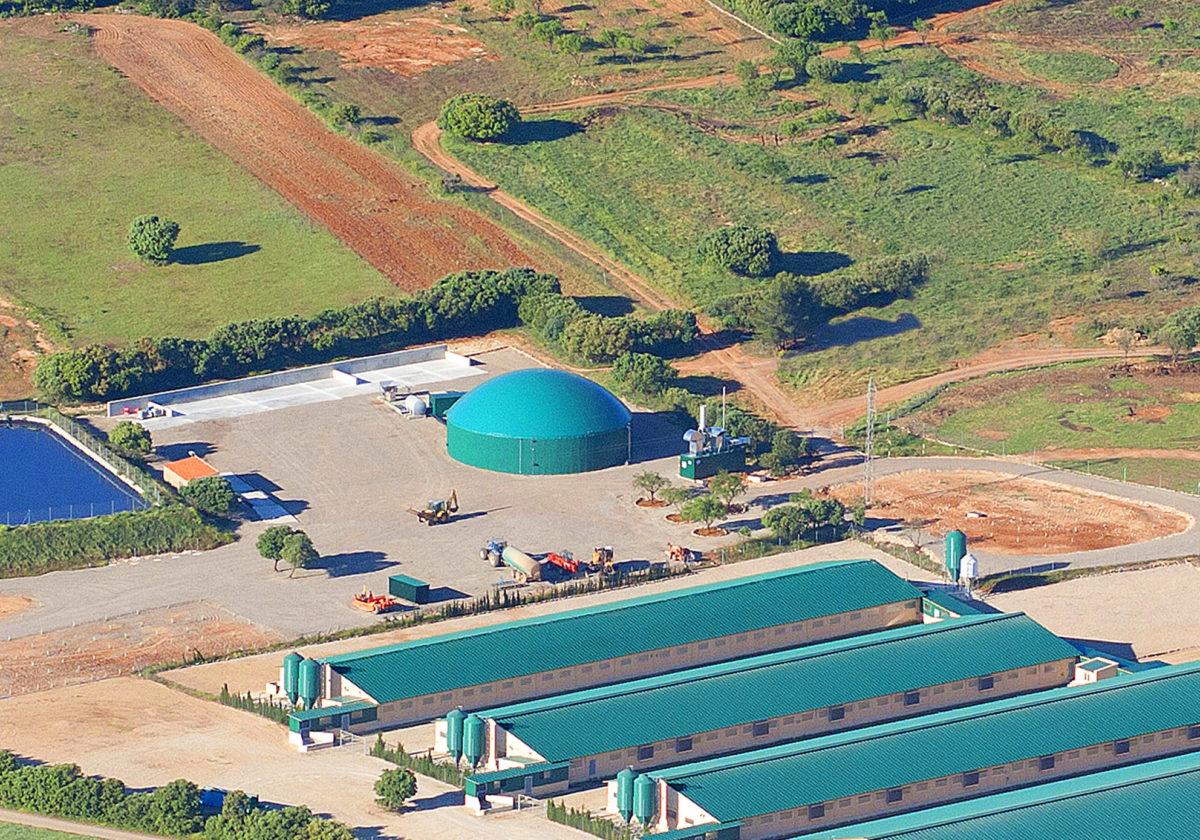 Planta de Biogás Balsa de Ves Albacete 250kW INDEREN 05