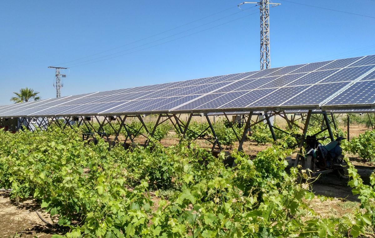 agrovoltaica solar fotovoltaica agricultura Agrovoltaica-INDEREN-201909-P01