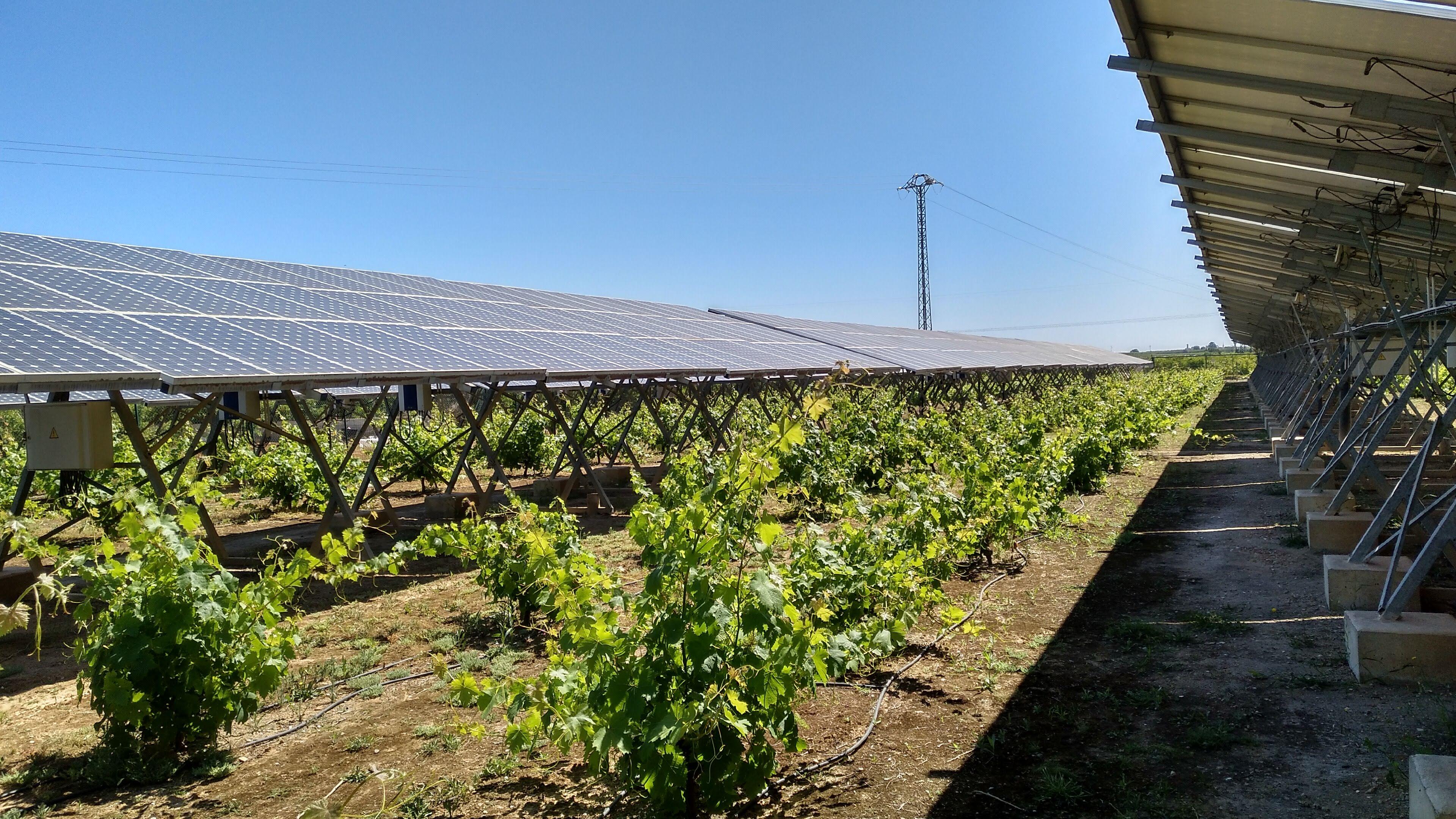 INDEREN outreach class renewable INDEREN Jornada de concienciación energías renovables escolares Huerto Solar de Picassent 03