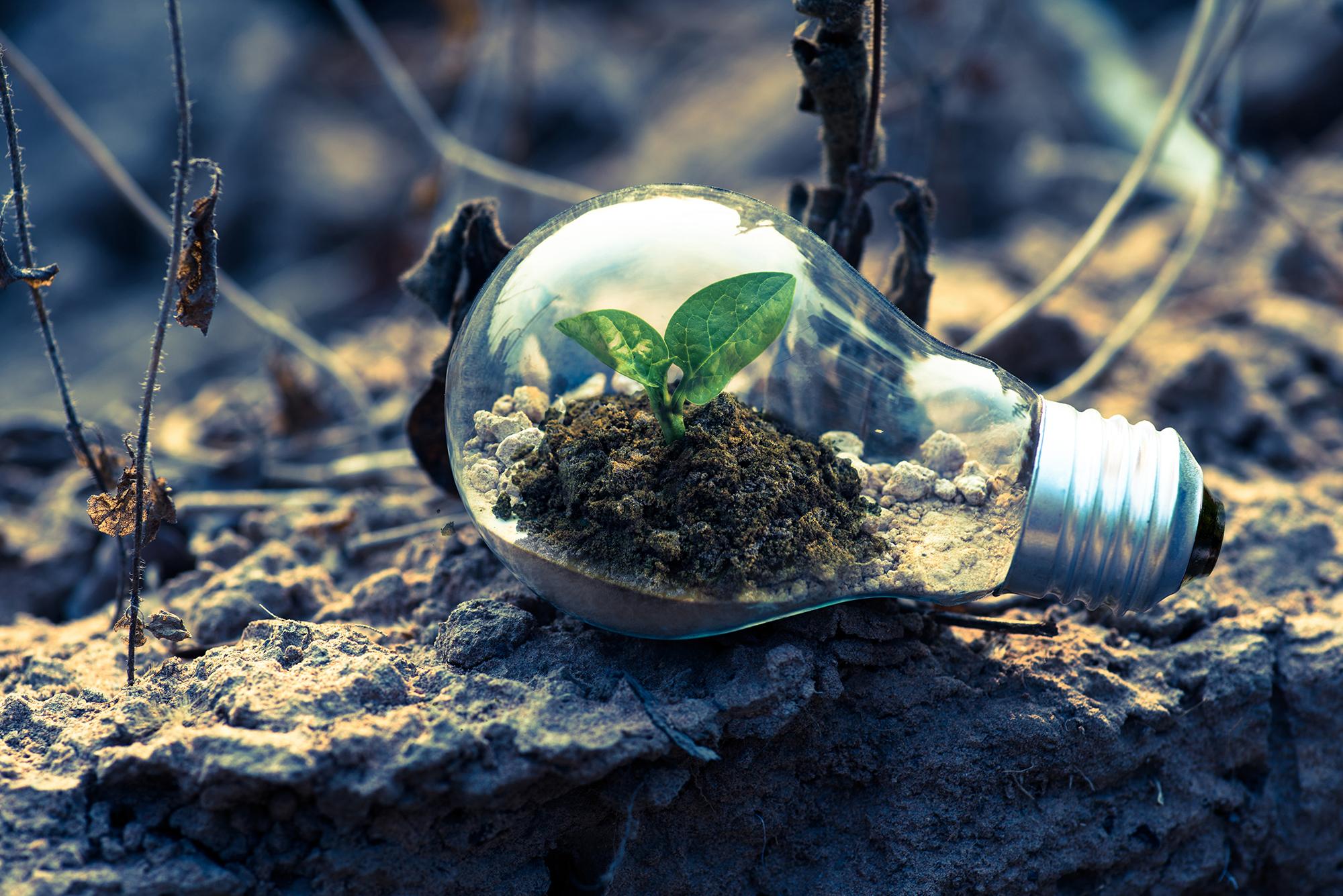 TRANESOL Sapiens proyectos agro-fotovoltaicos-INDEREN02
